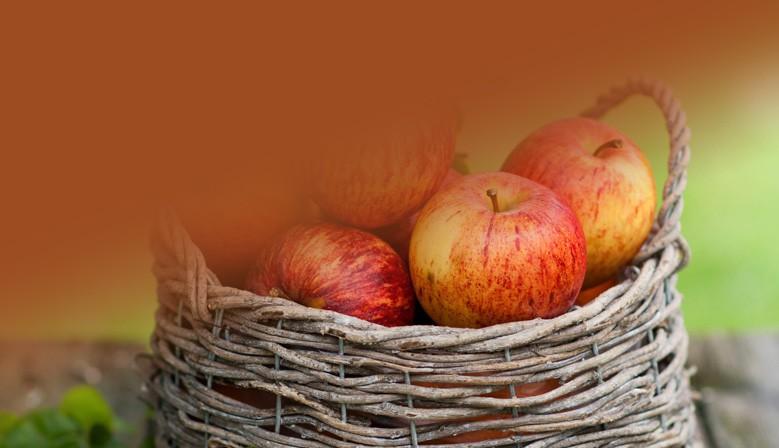De Haan - Groente en Fruit